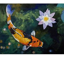 Showa Koi and Water Lily Photographic Print