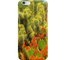 Prickly Encounter iPhone Case/Skin