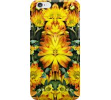 Reflections of Life iPhone Case/Skin