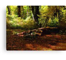 Autumn Dawn - East Haddam Canvas Print