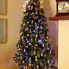 Our New Xmas Tree by Kenneth Hoffman