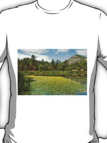 Granite Basin Lake T-Shirt