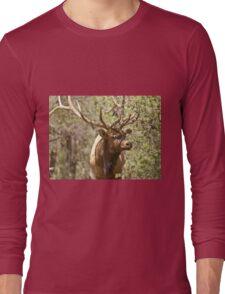 Big Bull Long Sleeve T-Shirt