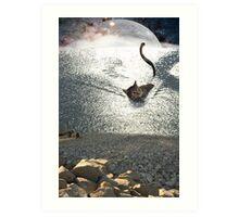 water cat Art Print