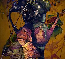 Skull by Sophie Higgins