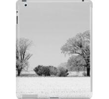 Wintry Hedgerow iPad Case/Skin
