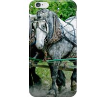 Three  heavy horses iPhone Case/Skin