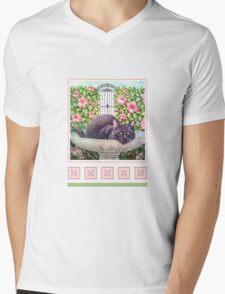 Sir Nightly, Cat of Mystery Mens V-Neck T-Shirt