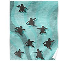Loggerhead Sea Turtle Hatchlings Poster