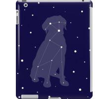Lab Constellation iPad Case/Skin