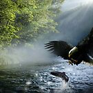 Eagle and Salmon by Cliff Vestergaard