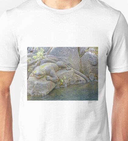Maori Rock Carvings 2, New Zealand Unisex T-Shirt