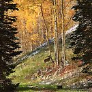 Autumn's Blessing Phone Case by Gene Praag