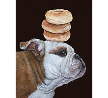 Guardian of the bagels Photographic Print