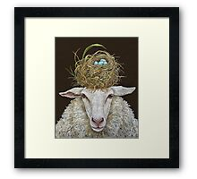 Judith the Sheep with nest Framed Print