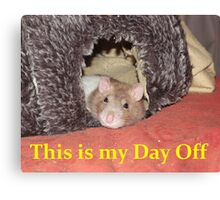relaxed rat Canvas Print