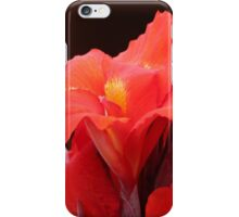 Red Canna Lilies iPhone Case/Skin