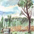Old Shed at Dawn by John Douglas