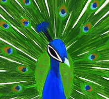 Colorful Peacock  by Kelly Betts