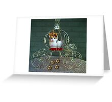 I CAN BE THE PURRFECT QUEEN OR THE QUEEN OF DENIAL>FELINE>CAT PICTURE Greeting Card