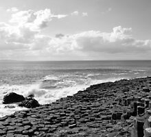 Giant's Causeway, Ireland by Claire Campbell