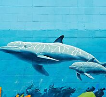 Dolphins graffiti mural by yurix