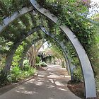 South Bank Arches & Bouganvillea. Brisbane, Queensland.Aust. by Rita Blom