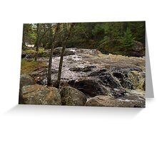 Wisconsin State Park : Amnicon 1 Greeting Card