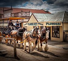 Sovereign Hill 1850 by Sandra Anderson