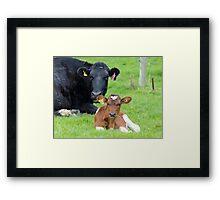 My Baby Girl - Dairy NZ Framed Print