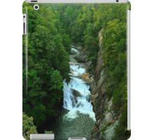 Tallulah Gorge iPad Case/Skin