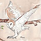 My Barn Owls (male) by Maree Clarkson