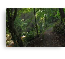 Along the the Lade Braes Canvas Print