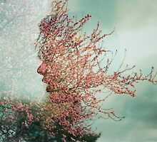 Cherry Blossom Double Exposure  by uune