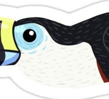 White-throated Toucan Sticker