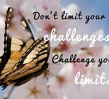 Don't limit your challenges .. Challenge your limits by bogratt