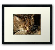 Bite Your Tongue Framed Print
