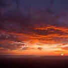 Hot Air Balloon Sunrise by ImagesbyDi