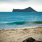 Beach in Oahu by Karen Duffy