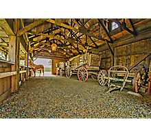 He`s In The Barn Photographic Print