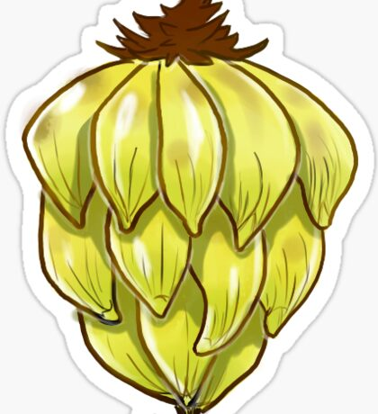 Cavendish Delight - Banana Bunch Sticker