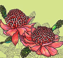 Australian Flower Series - Waratah Colour by MyArtefacts