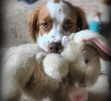 I Wuv My Wabbit by Larry Lingard-Davis