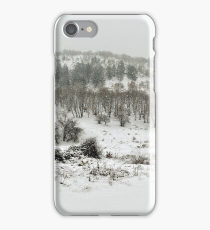 Snowing Forest iPhone Case/Skin