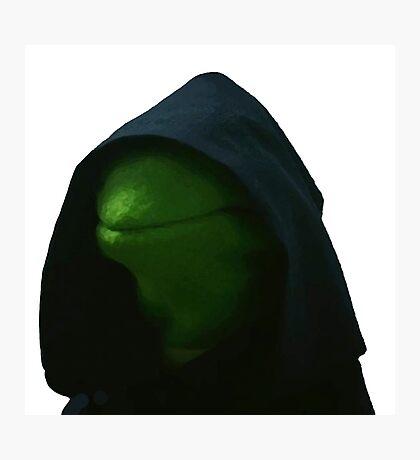 Evil Kermit Meme 2 Photographic Print