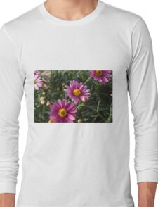 colored daisy in spring Long Sleeve T-Shirt