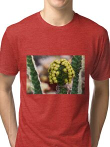 succulent plant Tri-blend T-Shirt