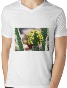succulent plant Mens V-Neck T-Shirt