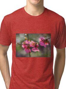Japonica Tri-blend T-Shirt