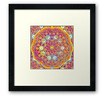 Psychedelic jungle kaleidoscope ornament 15 Framed Print